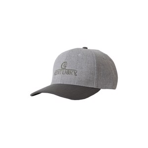 Kentucky Baseball Cap Grey embroidered logo