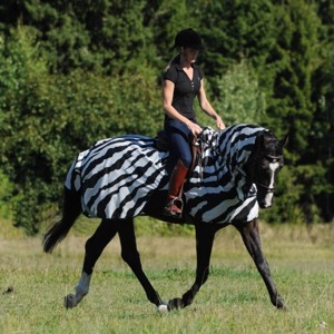 Bucas Buzz-Off Riding Zebra