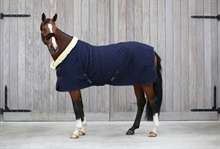 Kentucky Show rug 160 gram navy